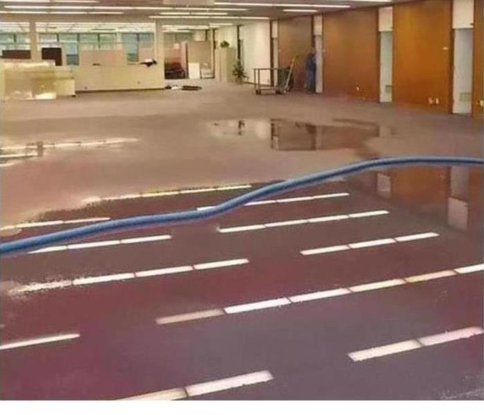 Storm Damage Taking Care of Your Business's Leaky Roof the Right Way