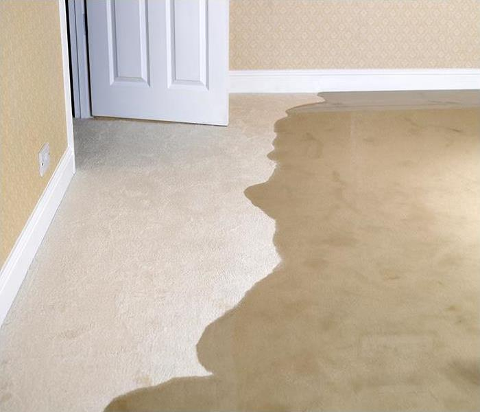 Water Damage Why You Should Choose An IICRC-Certified Specialist For Water Removal In Havre De Grace
