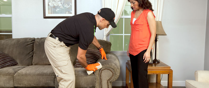 Aberdeen, MD carpet upholstery cleaning